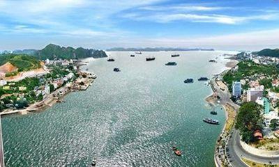 Tập đoàn lớn nhất Dubai muốn đầu tư vào bất động sản Việt Nam