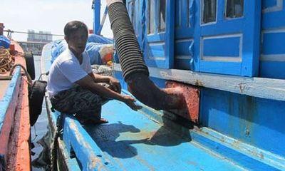 Ngư dân tính chuyện đồng loạt khởi kiện Trung Quốc