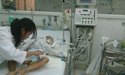 Đã xuất hiện viêm não Nhật Bản tại TP. HCM