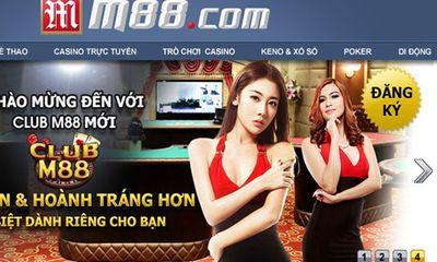 Mạng cá độ bóng đá ở Việt Nam: Chặt một đầu, mọc hai đầu?