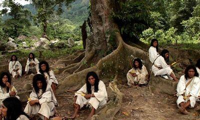 Kỳ lạ bộ tộc sống giữa rừng, cực kỳ thông thái