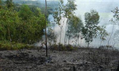 Hà Tĩnh: Cháy rừng thông ở khu di tích Ngã Ba Đồng Lộc