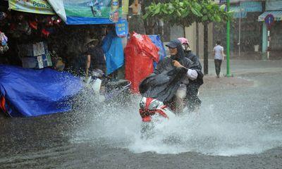 Mối nguy hiểm từ mưa axít