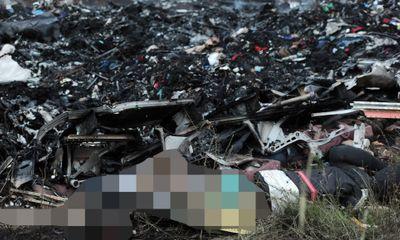 Clip: Hiện trường máy bay Malaysia rơi, 295 người chết