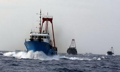 Trung Quốc dùng tàu cá