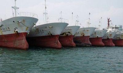 Đại gia vay nghìn tỷ mua tàu cá đồng nát 30 năm tuổi