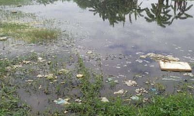 Dân ngạt thở vì lò giết mổ tập trung Bắc Sông Hương gây ô nhiễm