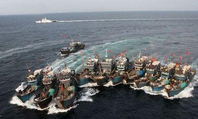Đuổi gần 9.700 lượt tàu TQ vi phạm Hiệp định nghề cá vịnh Bắc Bộ