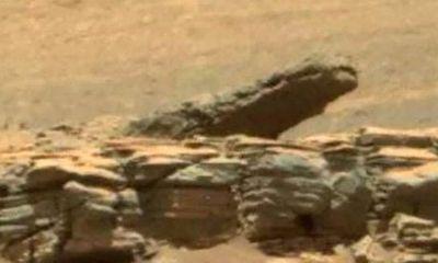"""Phát hiện hình ảnh """"cá sấu"""" sinh sống trên sao Hỏa?"""
