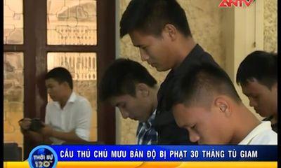 Cập nhật vụ bán độ ở V.Ninh Bình: 30 tháng tù cho kẻ chủ mưu