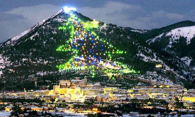 Những cây thông Giáng sinh giữ kỷ lục thế giới