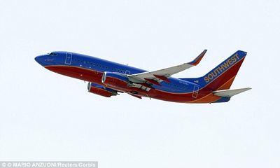 Máy bay hạ cánh khẩn cấp vì sản phụ sinh con