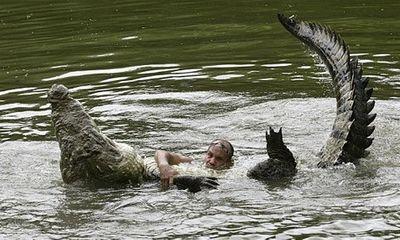 Video: Tình bạn kỳ lạ giữa người và cá sấu