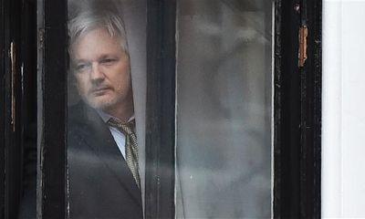 WikiLeaks bất ngờ hủy