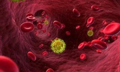 Anh chữa thành công một bệnh nhân HIV