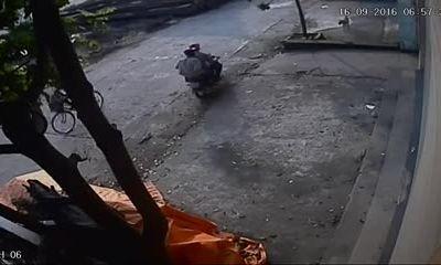 Trộm chó giữa ban ngày Hà Nội trong 5 giây