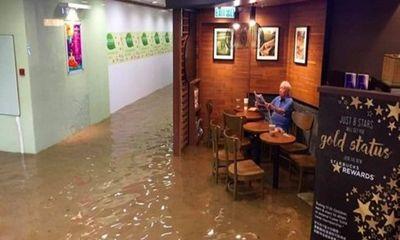 Người đàn ông thản nhiên ngồi đọc báo giữa quán café lụt lội