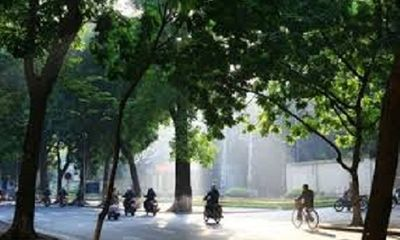 Dự báo thời tiết ngày mai 22/11: Bắc Bộ vẫn nắng trên 33oC