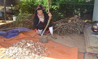 Khám phá bài thuốc dứt ngay bệnh trĩ của nữ cán bộ huyện vùng cao