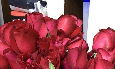 Cô gái biến 99 đóa hồng cầu hôn thành siro để lưu trữ sự ngọt ngào