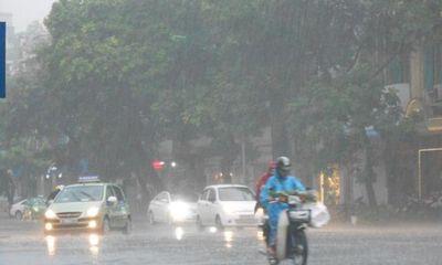 Dự báo thời tiết ngày mai 11/1: Bắc Bộ rét, có mưa rào