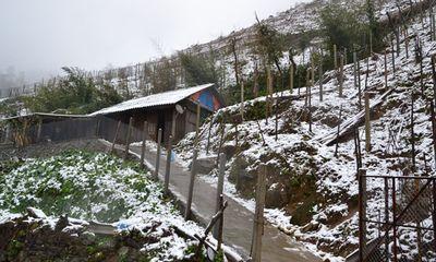 Dự báo thời tiết hôm nay 13/1: Bắc - Trung Bộ rét đậm, giảm mưa - Tin tức online