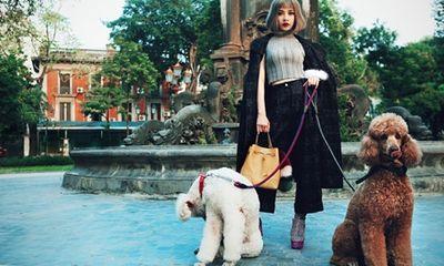 Chi Pu dắt cún cưng 1.000 USD dạo phố ngày xuân