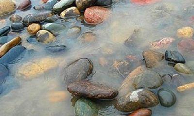 Bí mật bên trong những hòn đá dọc sông Dương Tử có giá hàng trăm triệu đồng