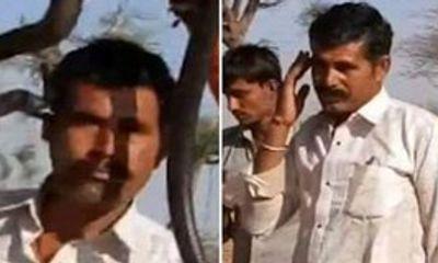 Bị rắn hổ mang cắn chết khi mải chụp ảnh ở Ấn Độ