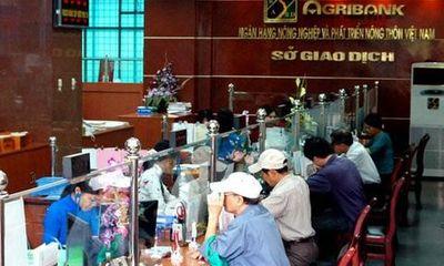 Agribank đẩy mạnh đầu tư phát triển nông nghiệp, nông thôn Thái Bình