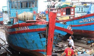 Lộ diện thủ phạm đâm chìm tàu cá, bỏ mặc 4 ngư dân trên biển Đà Nẵng