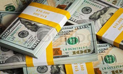 Tỷ giá USD hôm nay 25/4: USD tăng vọt thêm 30 đồng