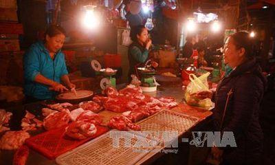Thương lái bắt đầu tìm mua trở lại, giá thịt lợn tăng nhẹ