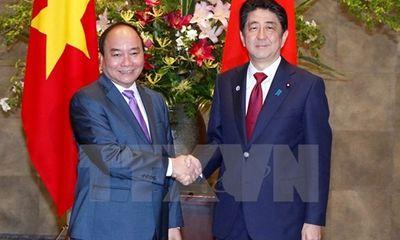 Quan hệ Việt-Nhật đặc biệt tốt đẹp trên nhiều phương diện