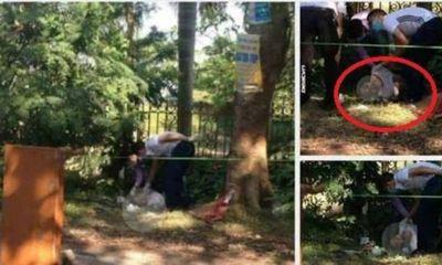 Hà Nội: Người đàn ông có hình xăm gục chết bên gốc cây, nghi do nắng nóng