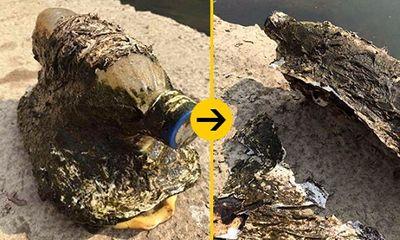 Phát hiện sự thật đau lòng sau khi vớt được chai nhựa lạ trôi trên sông