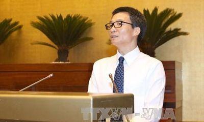 Phó thủ tướng Vũ Đức Đam: Phát triển du lịch trên bán đảo Sơn Trà phải đảm bảo phát triển bền vững