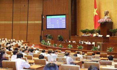 Quốc hội thông qua Luật Cảnh vệ và Luật quản lý, sử dụng vũ khí