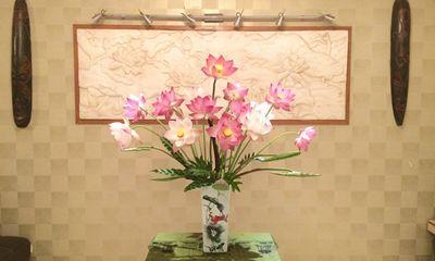 Nhà đẹp quyến rũ với những bông sen đúng mùa đẹp rực rỡ