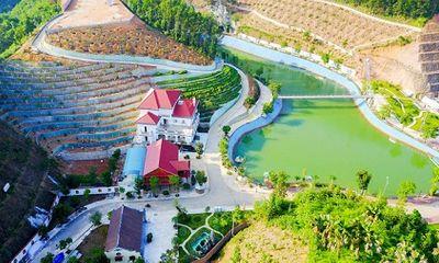 Thanh tra Chính phủ sẽ yêu cầu ông Phạm Sỹ Quý giải trình khoản vay 20 tỷ xây biệt thự