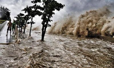 Bão số 10 suy yếu, Hà Tĩnh, Quảng Bình thiệt hại nặng nề