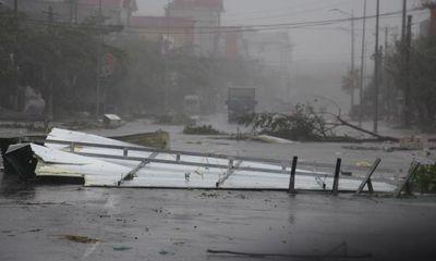 Trưởng thôn tử nạn khi phát quang cây cối sau bão số 10