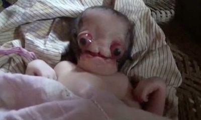 Em bé mới sinh có vẻ ngoài của