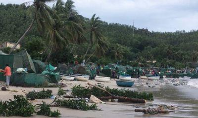 Sau bão số 12, người dân nuôi tôm hùm thiệt hại tiền tỷ vì mất trắng