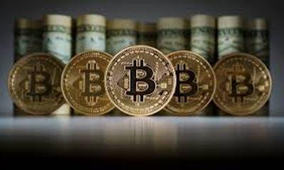 Giá bitcoin hôm nay 22/11: Giá bitcoin ổn định trên mức 8.000 USD