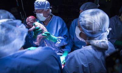 Em bé đầu tiên tại Mỹ ra đời từ người mẹ cấy ghép tử cung