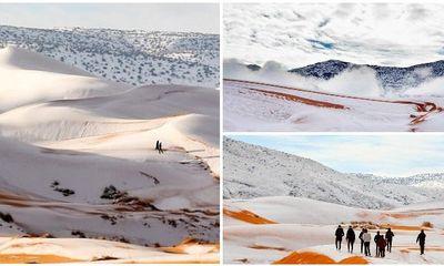 Ngỡ ngàng khi tuyết lại phủ trắng sa mạc Sahara