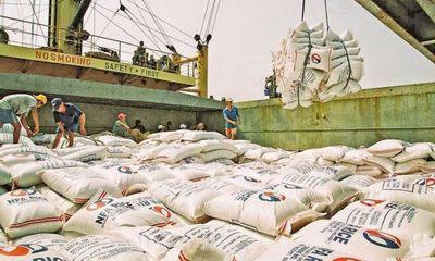 Doanh nghiệp Việt đang tồn hơn 760.000 tấn gạo