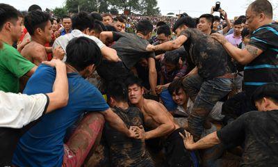 Trai làng giẫm đạp nhau trên bùn lầy, xô nhau xuống ao bèo để cướp phết