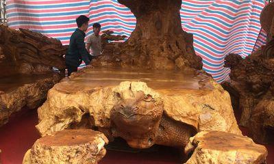 Bộ kỳ mộc bằng gỗ nu đinh nghìn năm tuổi được chào giá 3 tỷ đồng